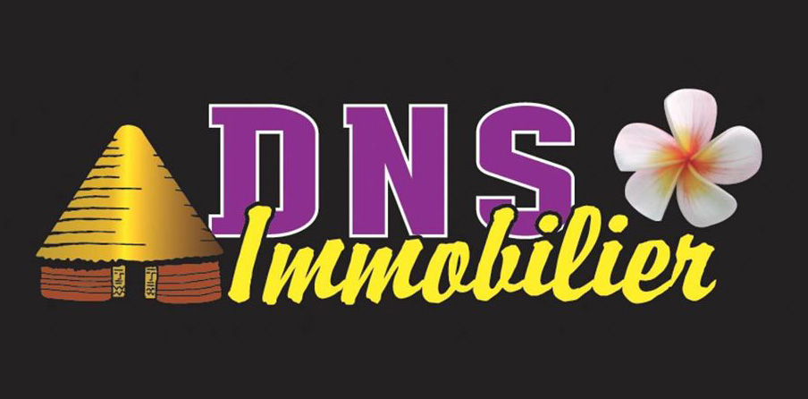DNS Immobilier